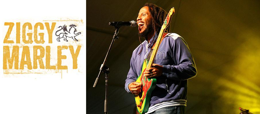 Ziggy Marley at Ace of Spades